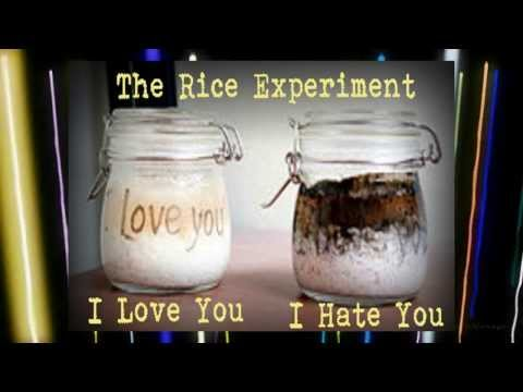 The Power of Positive Thinking Masaru Emoto's Rice Experiment